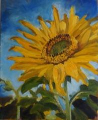 Sunflower SOLD