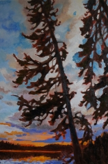 Pine 24x36 SOLD