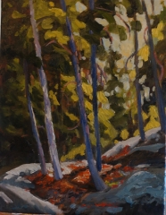 Forest Nook 14x18 oil  $825.00